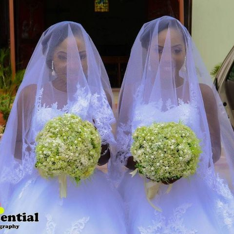 twins wed8