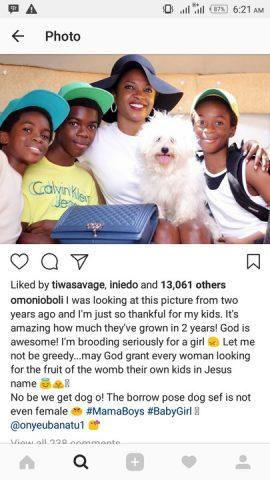 omoni family and dog saga