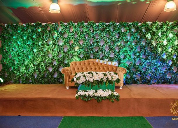 Fresh plants on display as decor
